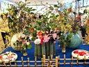 京都府立植物園 ツバキ展