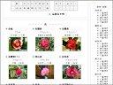 「花色」を h5 Firefox