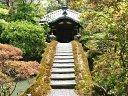 土橋越しの園林堂